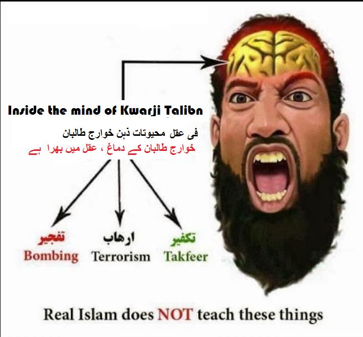 Books & Articles: Rebellion by Khawarij Taliban & Shari'ah