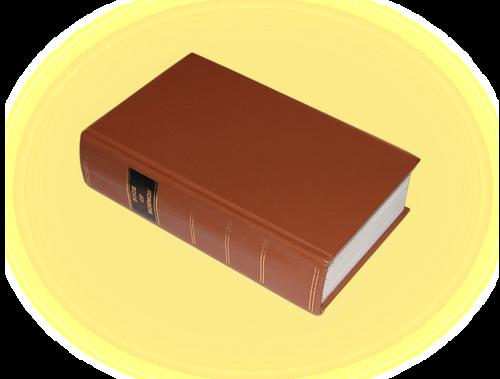 The Joe and Jill Chronicles: 1830 Book of Mormon Facsimile