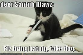 Survivor: Wordless Wednesday: Christmas kitties