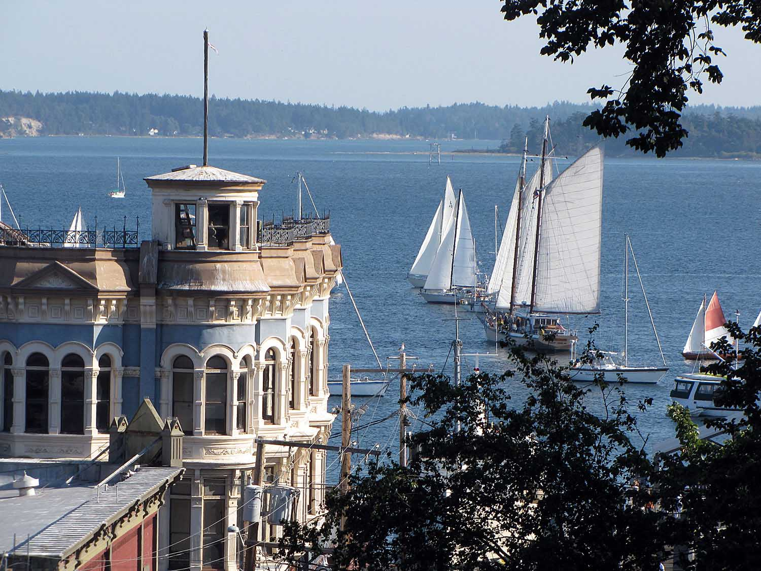 Our Port Townsend Life