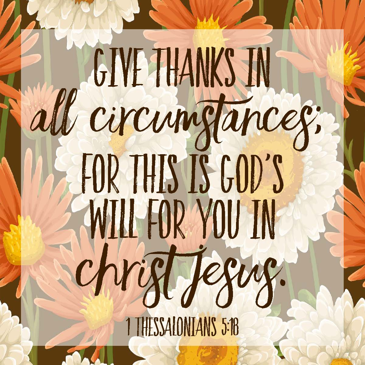 Sweet Blessings: Give Thanks