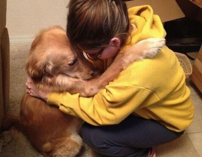 Dog Hug - 1Funny.com