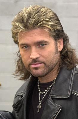 My 411 on Hairstyles: Mullet Hairstyles