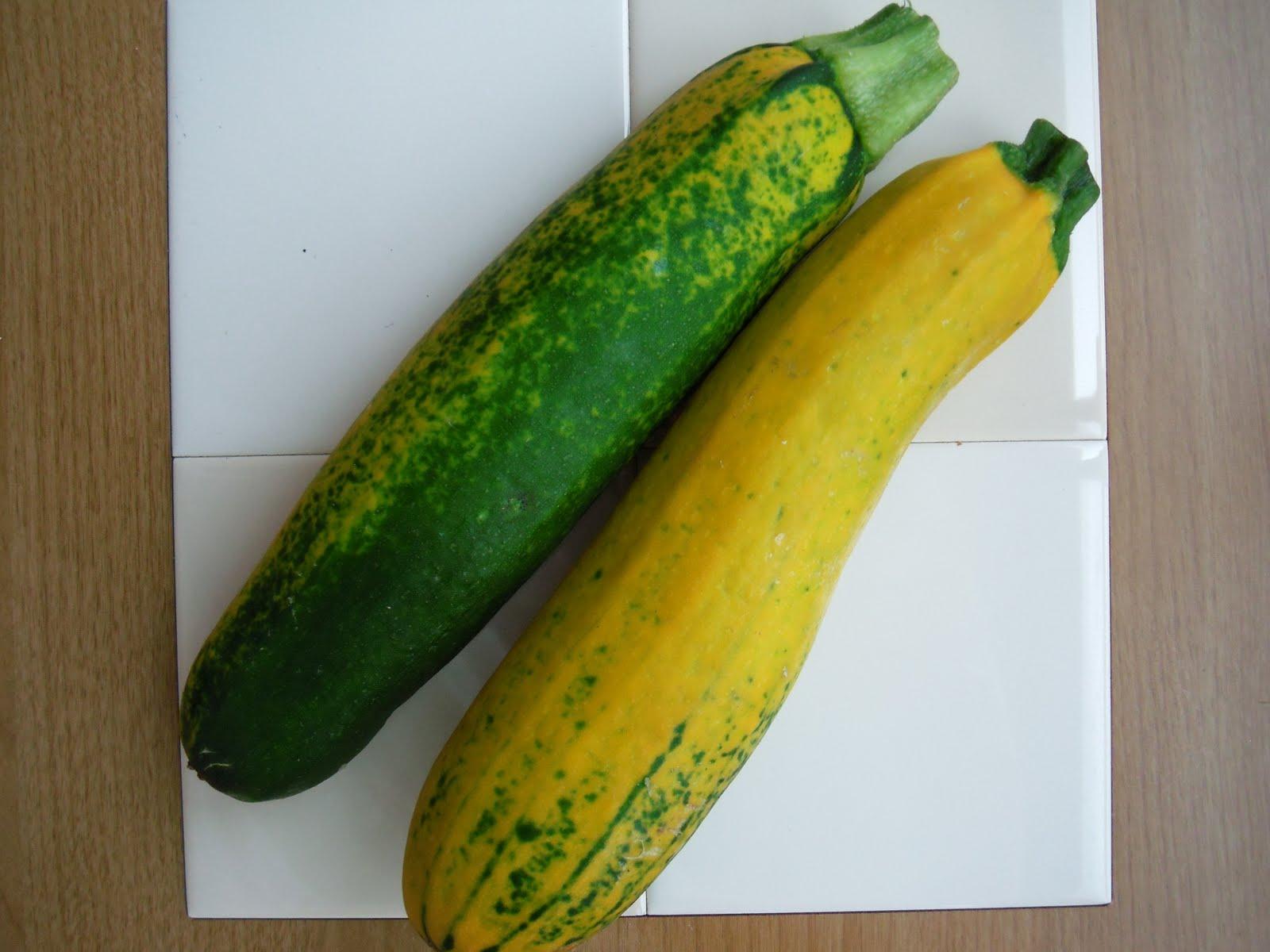 OISHINESS: Yellow Zucchini