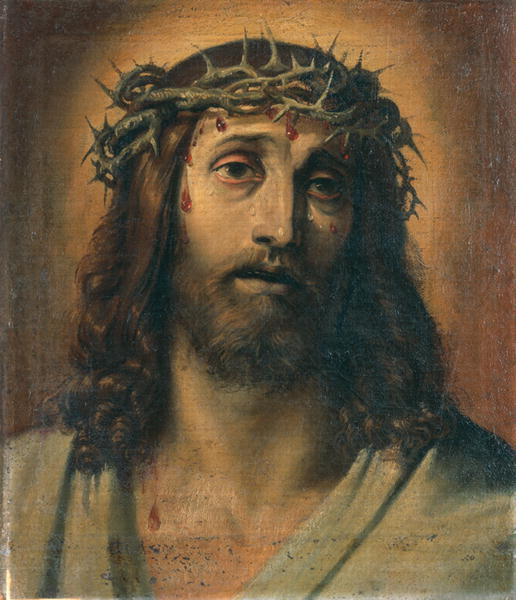 Divine Mercy Apostolate: The Crown of Thorns