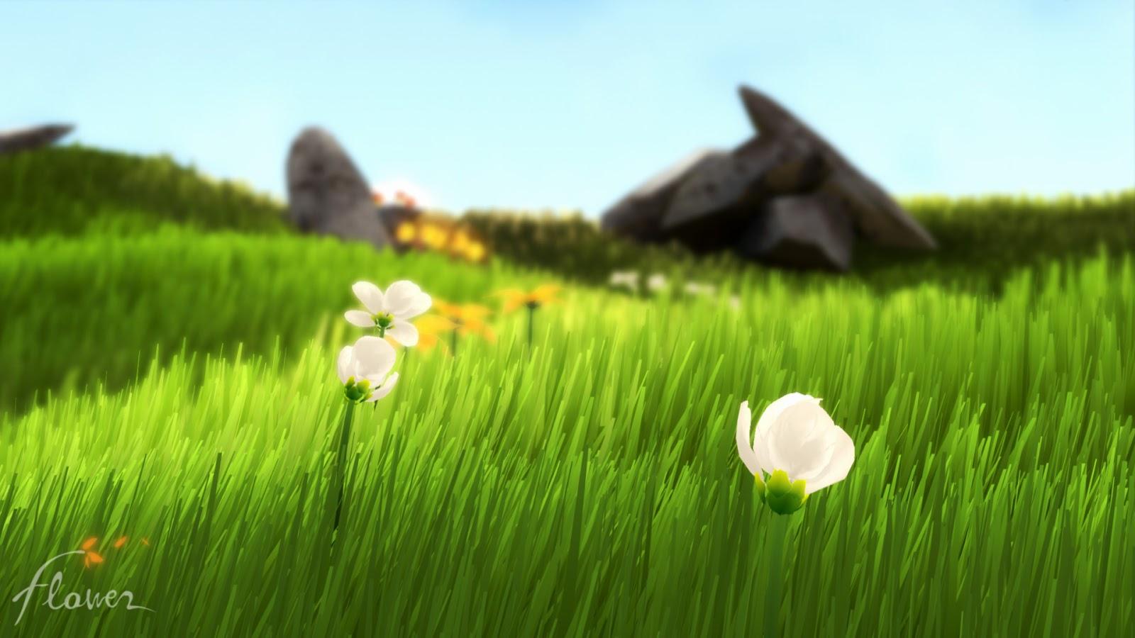 زهرة مابين الطبيعة خلفية عالية الدقة | معارض أجمل الخلفيات بالعالم - HD Wallpapers