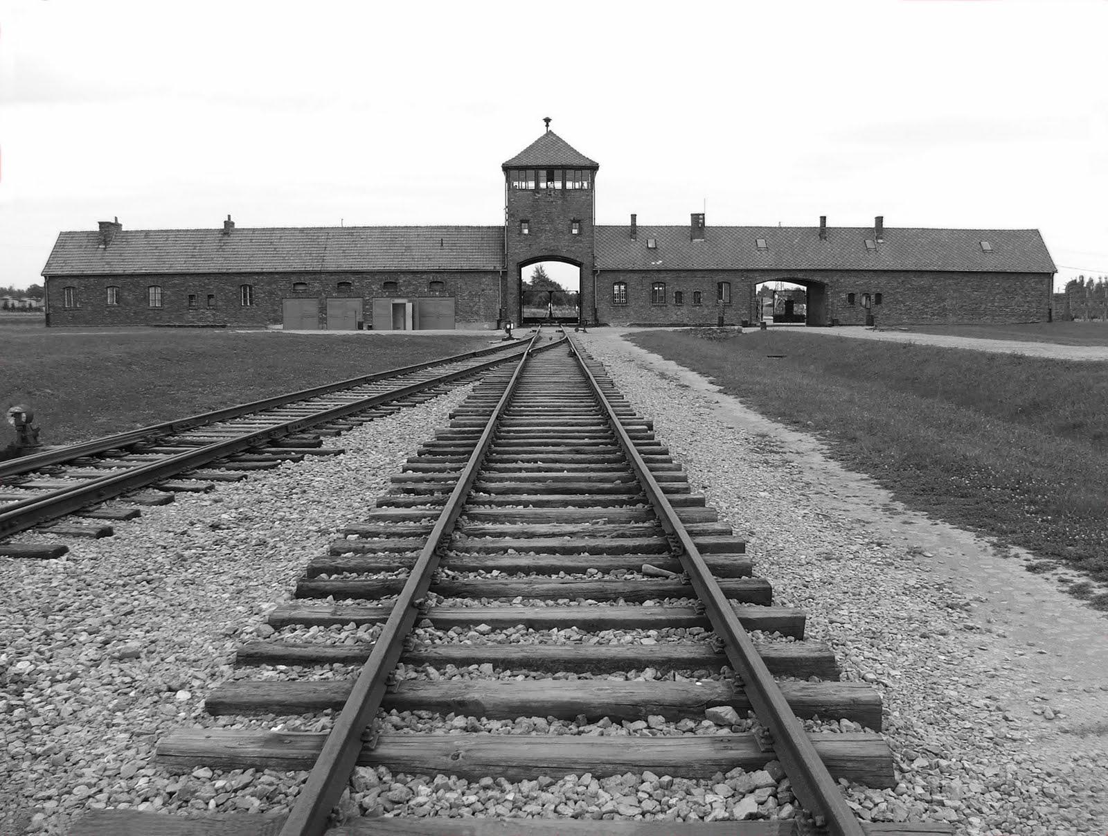 My Adventures in Poznan: Auschwitz!