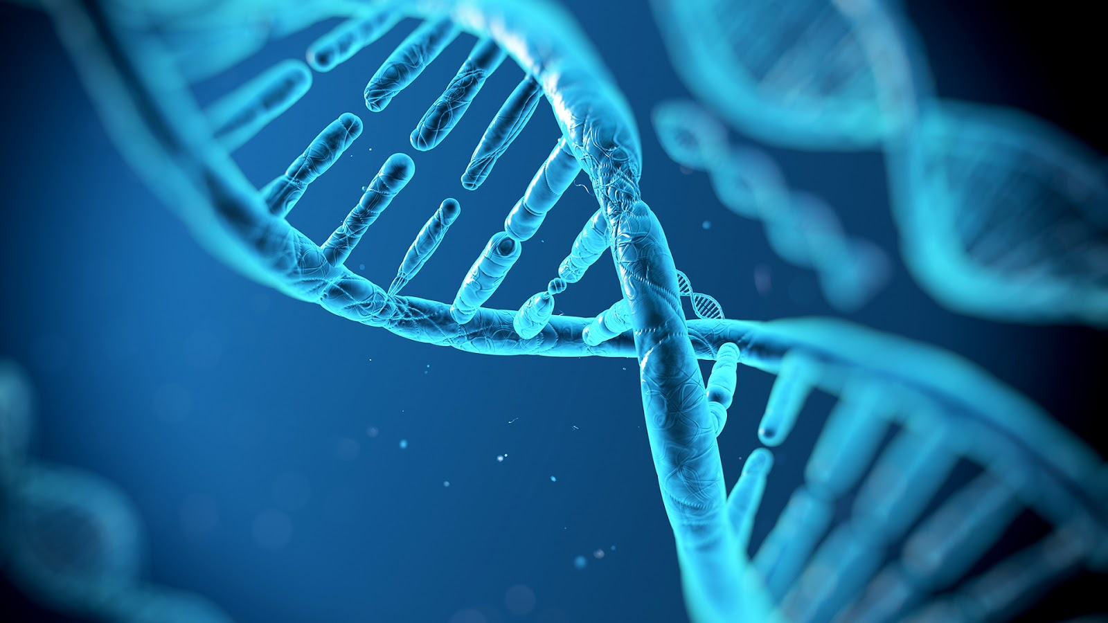 Tiny devices made of DNA detect cancer with fewer false alarms…