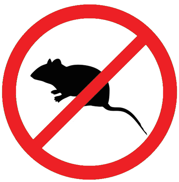 Home A Sign No Snitching Rats