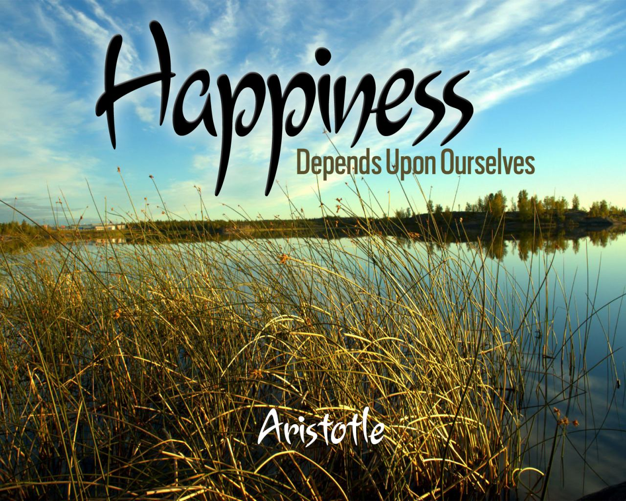 Happiness - Aristotle
