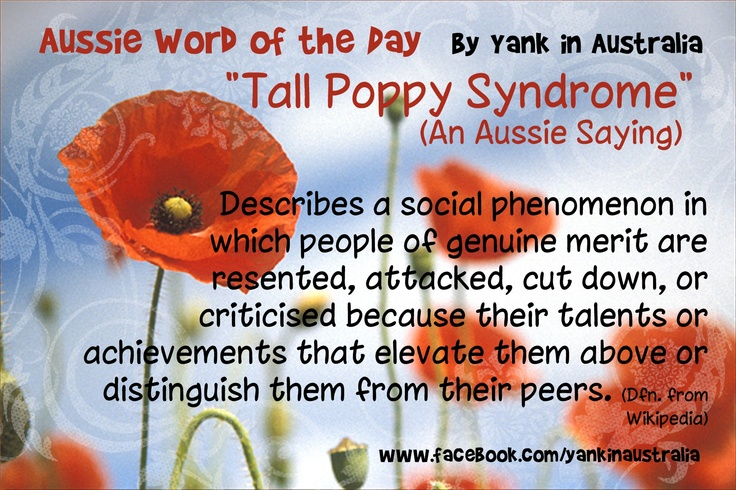 "Tall Poppy Syndrome"" call Australians that social phenomena which ..."