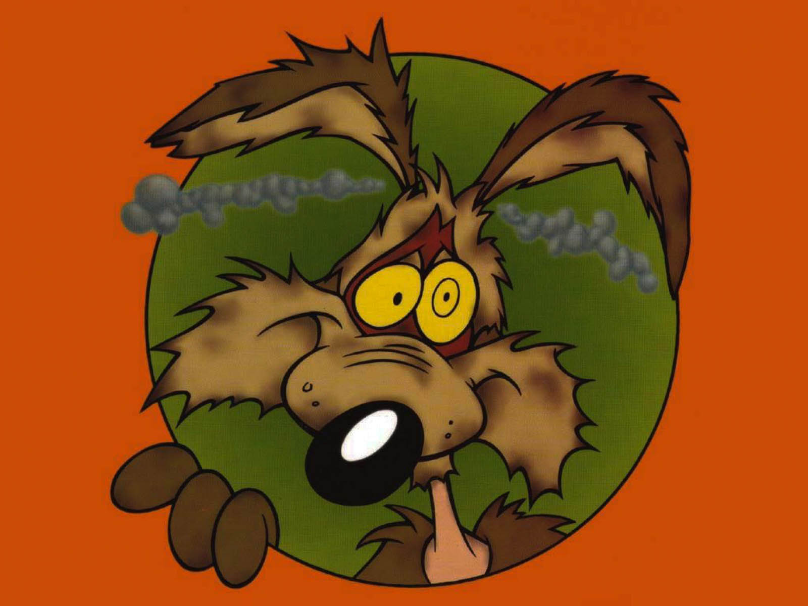 Wile E Coyote High Resolution HD Wallpapers - All HD ...