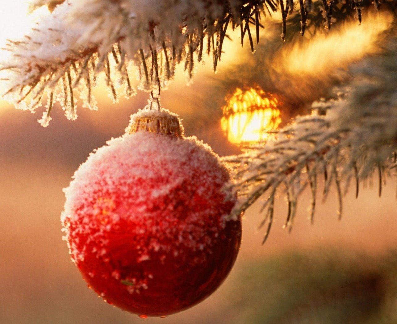 Pics Photos - Craciun Fericit Bunatatea Lumina Domnului Nostru Iisus ...