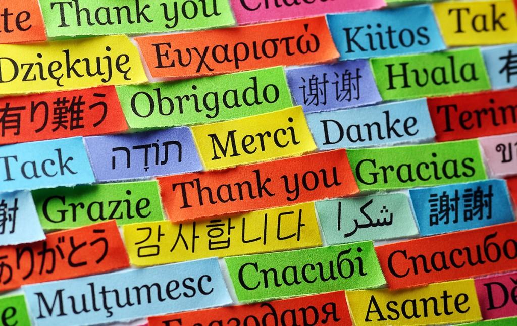 Jr. High Foreign Language - Mrs. Growney