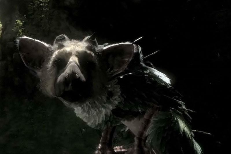 ... griffin. Here's an interesting screenshot from the Last Guardian