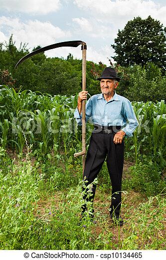 Stock Image of Senior farmer with scythe near a corn field ...
