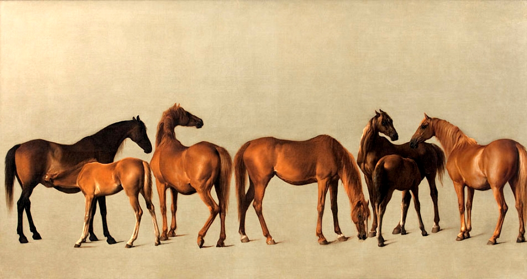 Mares and Foals without a background', 1762 (oil on canvas)