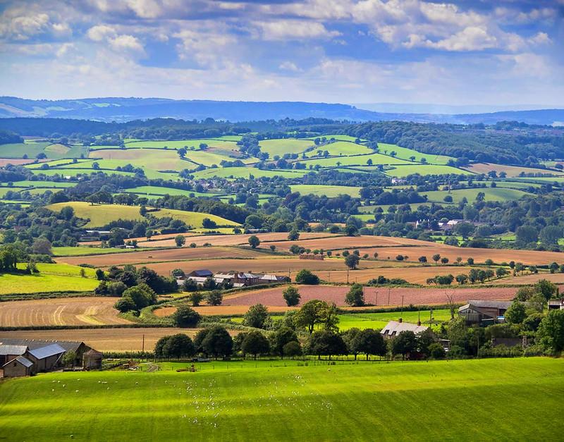 Dreaming of Devon - Britain and Britishness