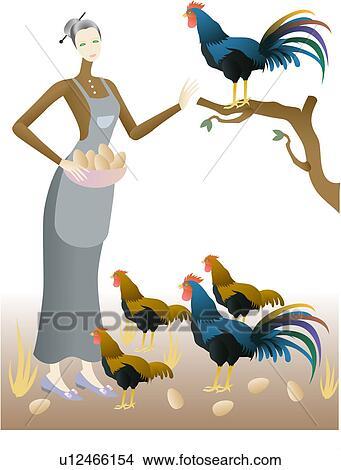 animal, farmer, egg, chicken, farm, vertebrate, work View Large ...
