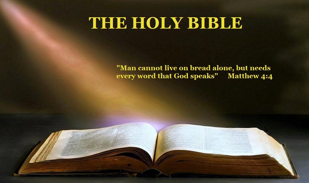 *Donne-nous notre Pain de ce jour (Vie) : Parole de DIEU *, *L'Évangile et le Livre du Ciel* ?u=http%3A%2F%2Fgodourprotector.com%2Fwp-content%2Fuploads%2F2017%2F07%2FThe-Hole-Bible