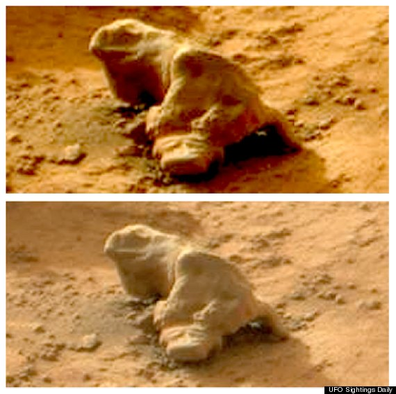 """The Martian """"iguana."""" The top image has been digitally enhanced to ..."""