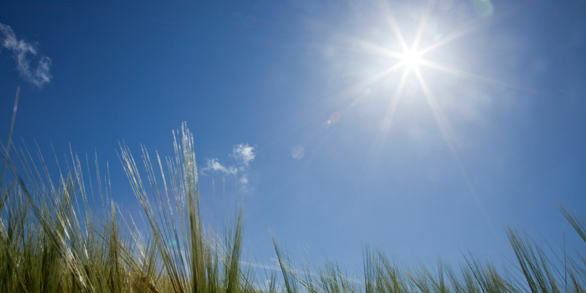 UVA Radiation From Sunshine Could Protect Against High ...