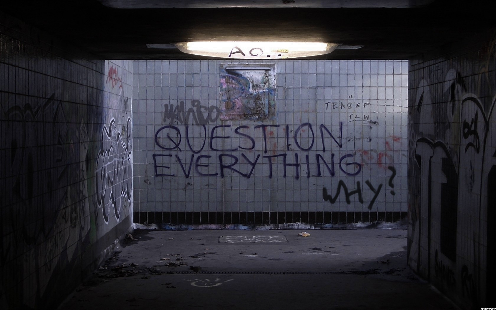 QUESTION EVERYTHING : pics