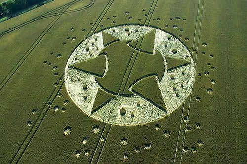 crop circle yang penuh misterius