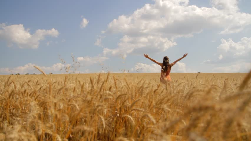 Young Woman Worship Pose Nature Summer Field Christian Concept Background HD Stock Footage Video ...