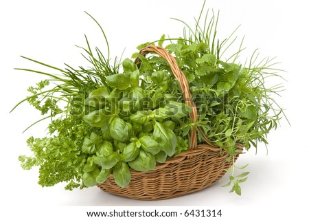 basket of herbs - parsley, basil, lemon balm, chives, savory - on ...