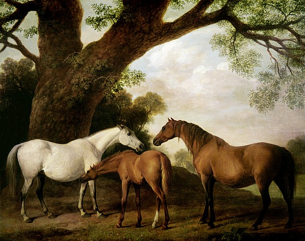 Two Mares And A Foal Print by George Stubbs