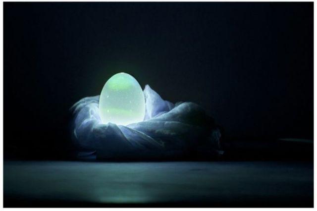 Unusual Homemade Egg Shell Light (4 pics)