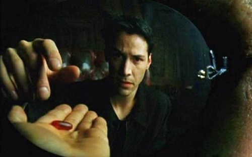 The Red Pill Overlap, Why New Age Yogis Have Swallowed QAnon Conspiracies, Julian Walker