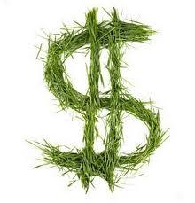 """""""El 'capitalismo verde' quiere mercantilizar la ..."""