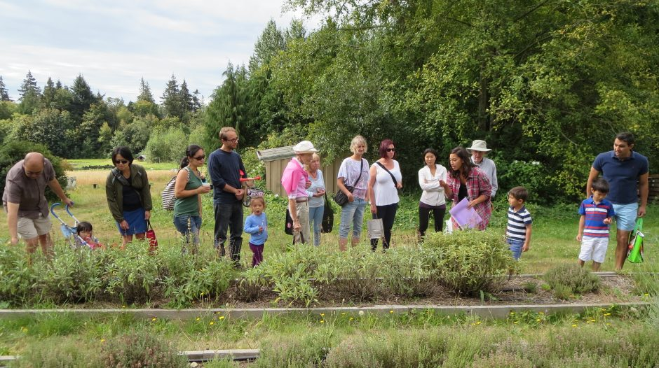 Guided Tours at UBC Farm | Centre for Sustainable Food Systems at UBC Farm