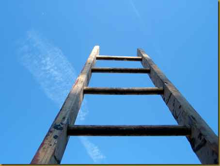 Grab the ladder: climbing your way to a self-published ...