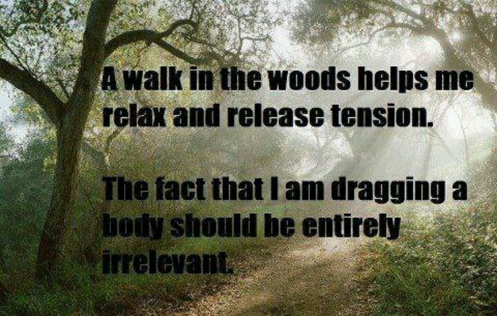 Walk in the woods | Funny sayings/quotes | Pinterest