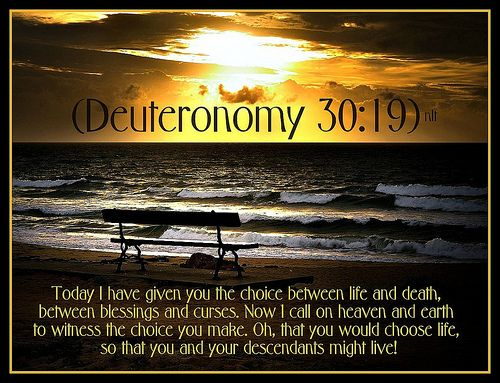 Deuteronomy 30 & 19 | Scripture | Pinterest
