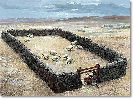 Hedge of Protection..... | Biblical - Faith - Gospel | Pinterest