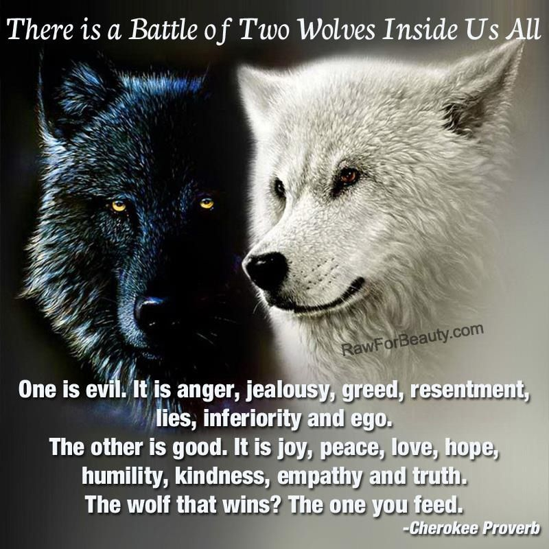 Feed The Wolf Love Quotes. QuotesGram