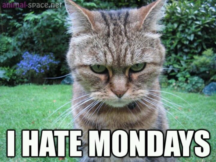 Ugh Monday Quotes. QuotesGram