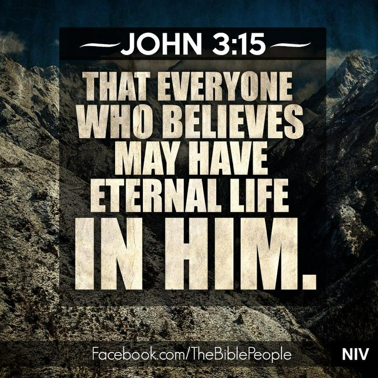 John 3:15 | Thoughts I like | Pinterest