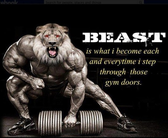 Beast http://visportsnutrition.ca/gallery/