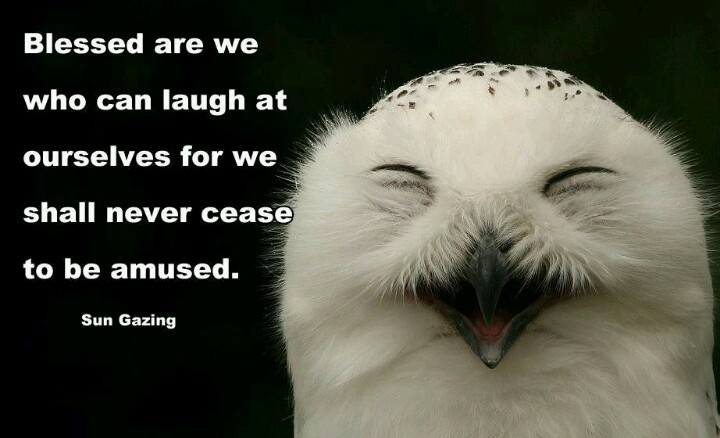 Laugh at yourself | Quotes & Sayings | Pinterest