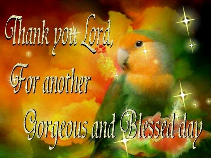lord's day quotes | Thank You LORD For Another Blessed Day!! | IT'S ...