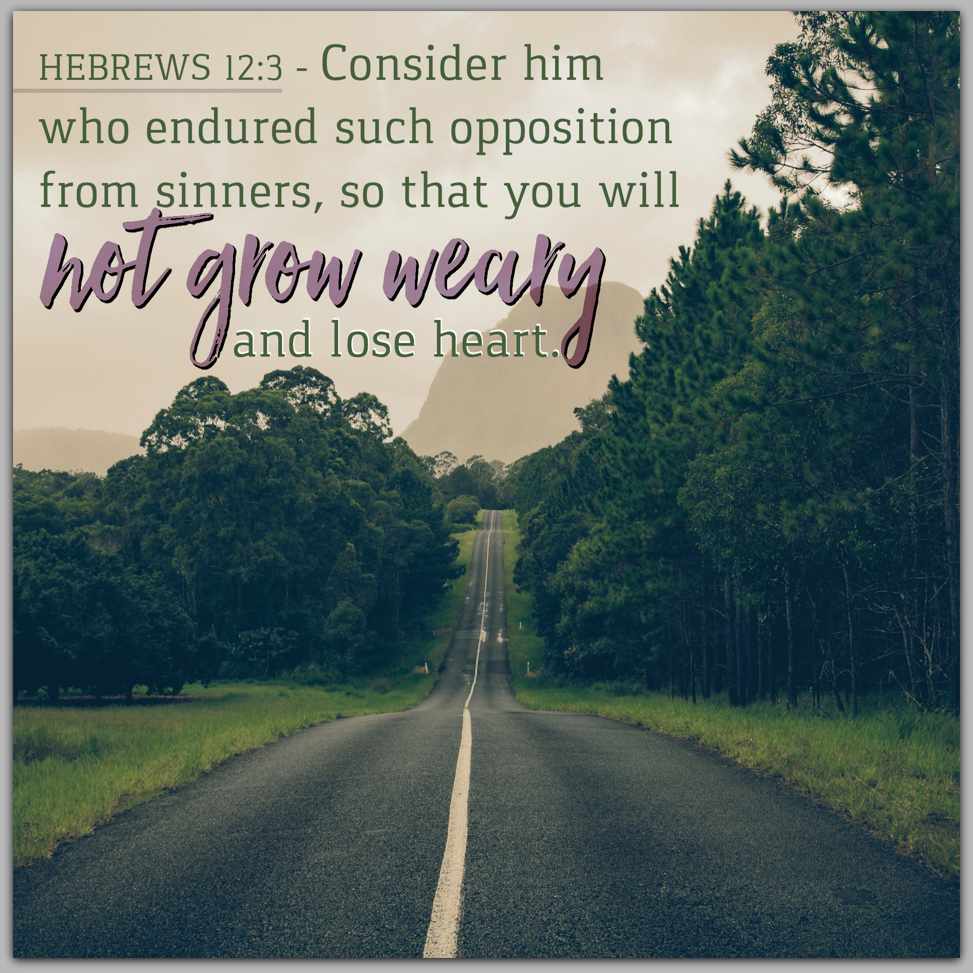 Hebrews 12:3 | KCIS 630
