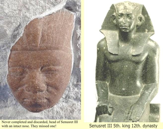 Sphinx Nose Shot Off for Pinterest