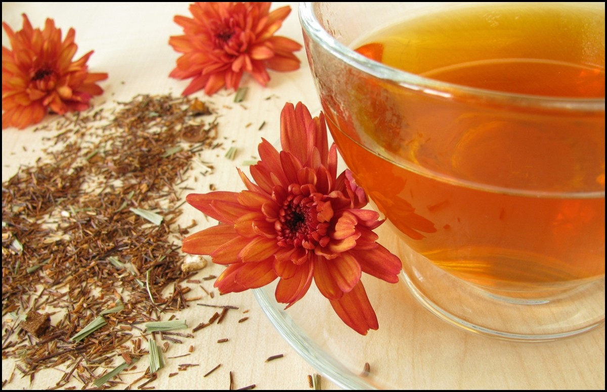 Delicious Health Benefits of Rooibos Tea - 10 Reasons Why ...