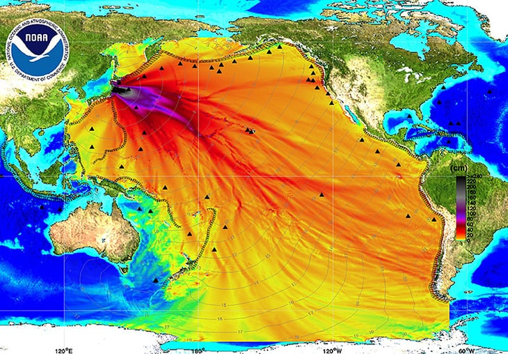 Fukushima Radiation Has Contaminated The Entire Pacific Ocean (And It ...