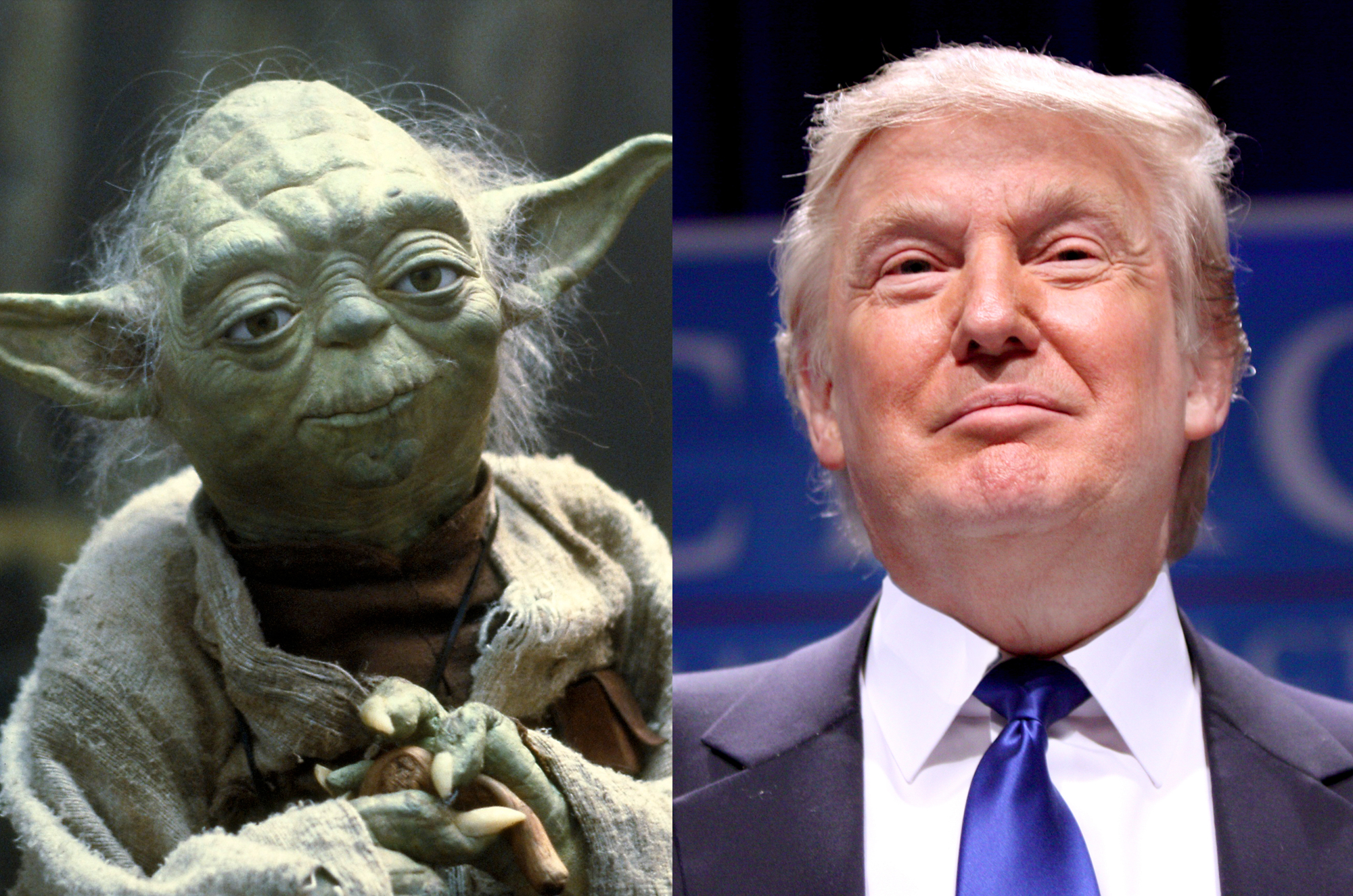 Trump Is The Republican Party's Yoda - The Wisdom Daily